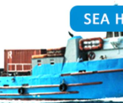 Sea-Hustler1.jpg