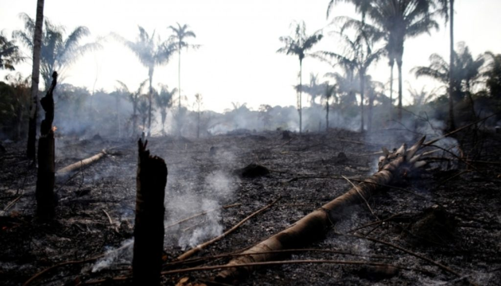Brazil-reports-record-surge-in-forest-fires.jpg