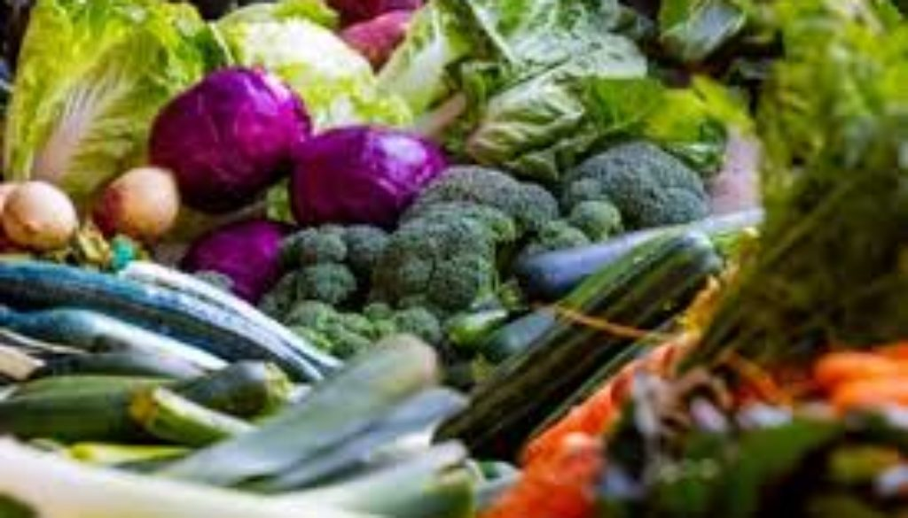 Plant-based-diet-can-fight-climate-change-says-United-Nations.jpg