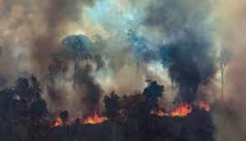 The-Brazilian-government-has-said-it-will-reject-an-offer-of-aid-from-G7-countries-to-help-tackle-fires-in-the-Amazon-rainforest..jpg
