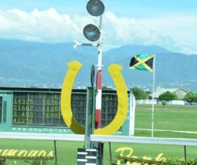Apprentice-Raddesh-Roman-stars-at-Caymanas-Park-ahead-of-10-day-ban.jpg