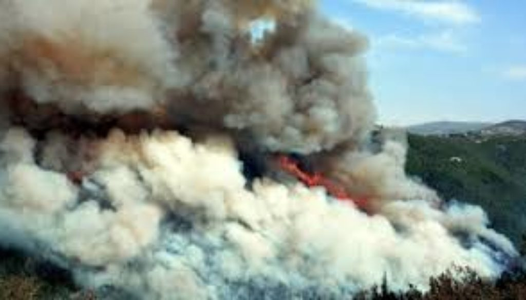 Forest-wildfires-Europe-sending-help-to-Lebanon.jpg