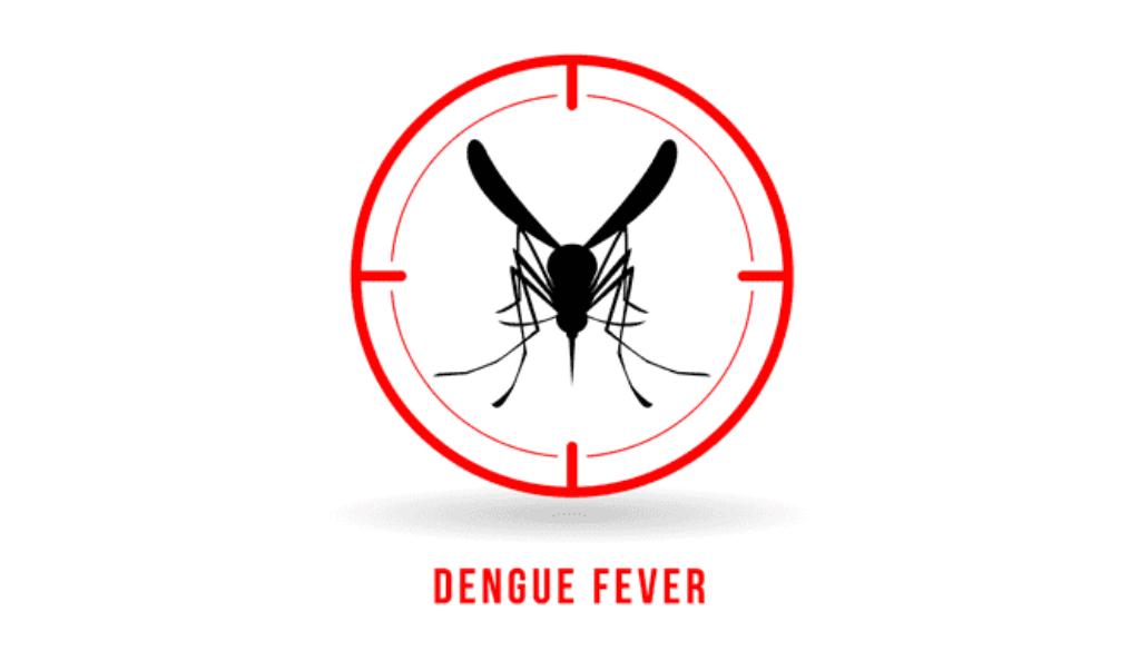 dengue-fever.png